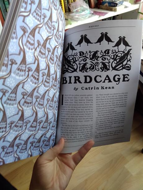 The Birdcage Catrin Kean Ghastling